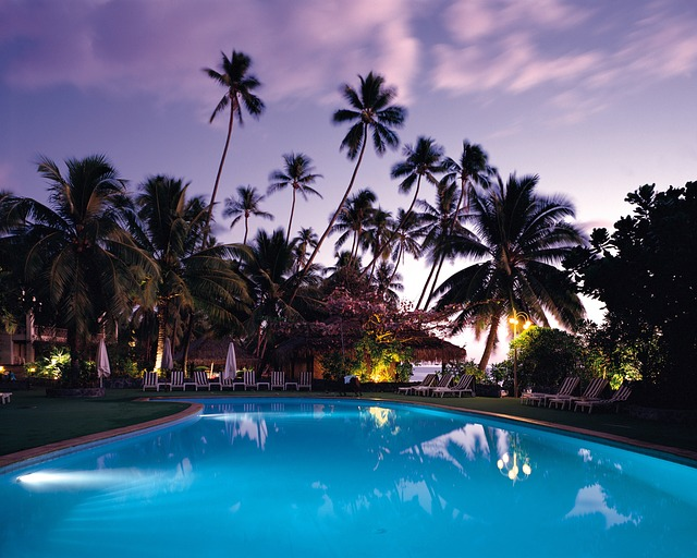 palmy za bazénem.jpg