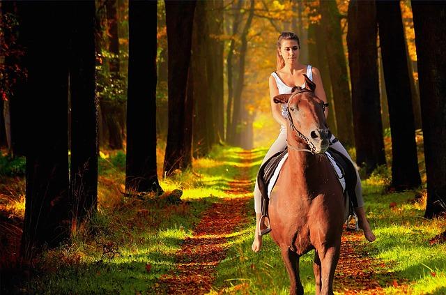 slečna na koni